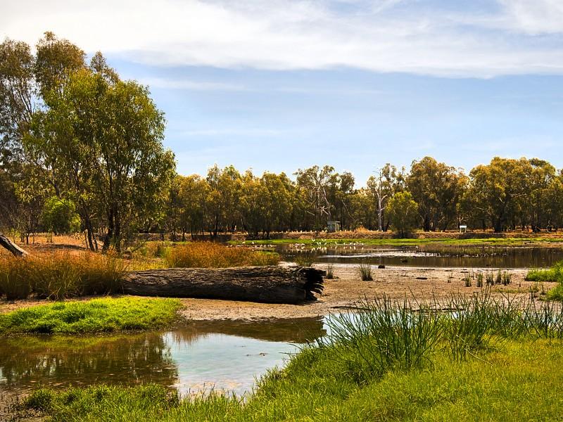 waterways-wetlands-gallery-04