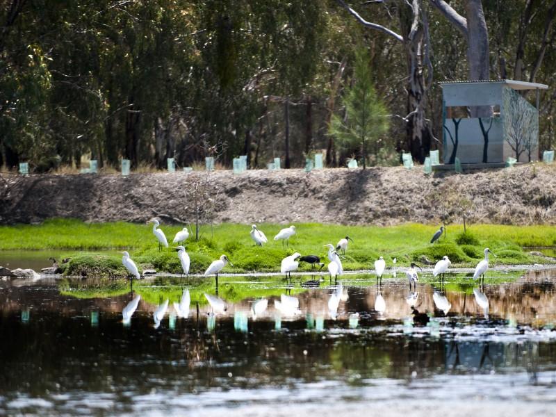 waterways-wetlands-gallery-05