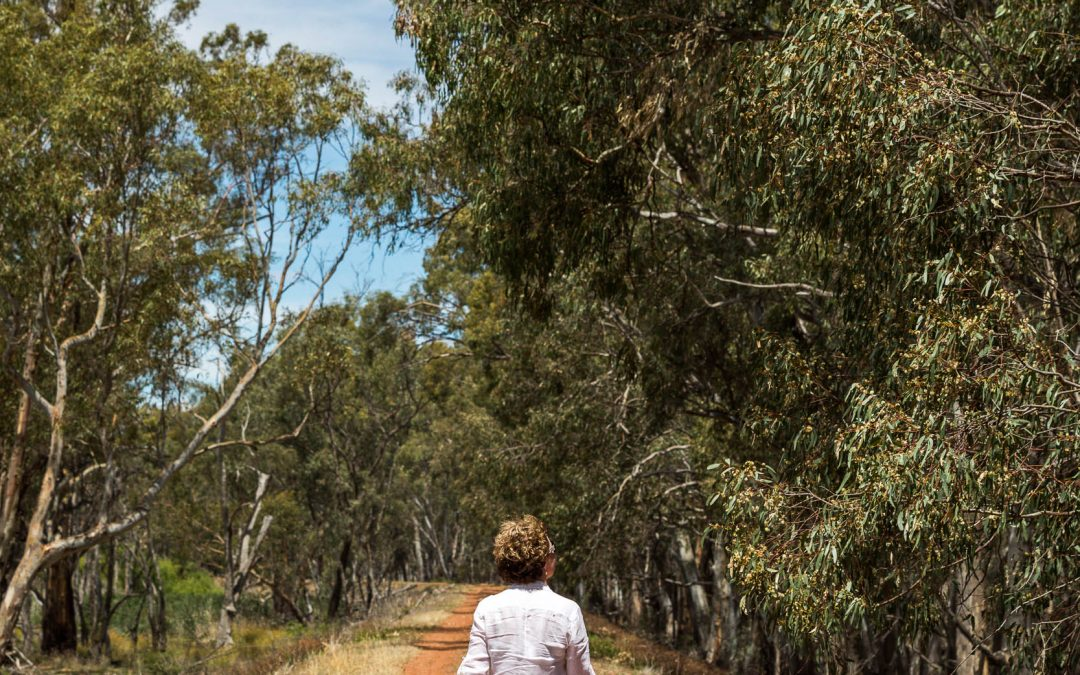 Bundidgerry Walking Track